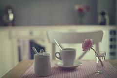 Mi cocina (Graella) Tags: cocina kitchen hogar home flor flower ranunculus ranunculo desayuno merienda breakfast coffee cafe stilllife