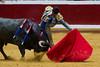 DSC_9139.jpg (josi unanue) Tags: animal blood spain bull arena bullfighter sansebastian esp toro traje asta sangre espada bullring unanue guipuzcoa matador torero tauromaquia sufrimiento cuerno banderilla banderilero