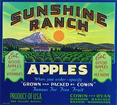 "Sunshine Ranch • <a style=""font-size:0.8em;"" href=""http://www.flickr.com/photos/136320455@N08/20850642483/"" target=""_blank"">View on Flickr</a>"