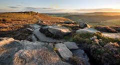 a walk along the edge (awhyu) Tags: peakdistrict heathers derwentedge saltcellar andrewyuphotography