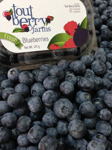Tout Berry Farms Blueberry Package with Loose Fruits a May 20, 2015