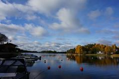The horizon/Horisonten (annesjoberg) Tags: nature sweden horizon natur landskap värmdö horisont stavsnäs djuröbron fotosondag fs151018