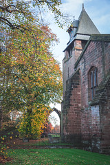 Autumn in Chester 2015 (Mark Carline) Tags: fall leaves cheshire chester chesterintheautumn autumninchester