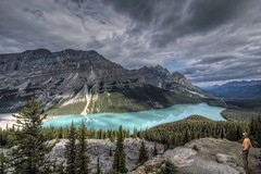 Peyto Lake, Canada (Patty Bauchman) Tags: canada mountains landscape mountainlake albertacanada banffnationalpark peytolake icefieldsparkway canadiuanrockies