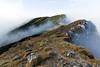 (-=AMF=-) Tags: autumn winter mountain mountains berg fog clouds nebel hiking herbst wolken hike berge zwiesel bersteigen