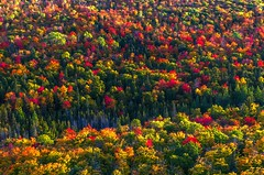 Colors of Autumn (Cole Chase Photography) Tags: autumn fall canon october michigan 5d upperpeninsula copperharbor markiii keweenawpeninsula brockwaymountain