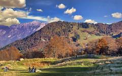 Brianza 2 (Fil.ippo) Tags: november autumn italy mountain landscape brianza filippo lombardy d7000 filippobianchi