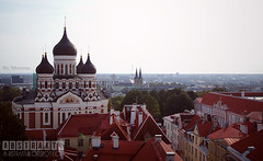 T A L L I N N (tiiatahvanainen_photography) Tags: city travel roof travelling church landscape photography photo tallinn estonia cityscape sony capital baltic roofs countries orthodox eesti tallinna orthodoxchurch viro travelphoto baltia minolta28mm sonya200