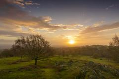 Sunrise at Beacon Hill (John__Hull) Tags: wood autumn trees nature grass sunrise countryside nikon rocks leicestershire hill sigma bracken ferns 1020mm beacon woodhouse charnwood d3200