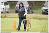 First Von King Von Backdraft RINALDI V  -0802 (Fab Photos Canine et Sportive) Tags: king von first backdraft