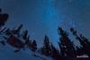 The Longest of Nights (kevin-palmer) Tags: bighornnationalforest bighornmountains wyoming night sky astronomy astrophotography stars starry clear cold frigid blue winter solstic december dark pine trees tokina1628mmf28 nikond750 orion boulders rocks nordicskitrail snow snowy white astrometrydotnet:id=nova1870735 astrometrydotnet:status=failed