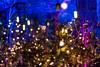 In A Christmas Tree Forest 1 (pni) Tags: xmas tree multiexposure multipleexposure tripleexposure kansallismuseo nationalmuseum thenationalmuseumoffinland helsinki helsingfors finland suomi pekkanikrus skrubu pni christmas