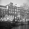 Tulips (Arne Kuilman) Tags: film ilford xp2 iso400 rolleicord 6x6 mediumformat amsterdam nederland netherlands straat street scan v600 lightfestival gracht amsterdamlightfestival tulips tulpen