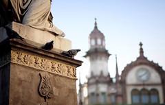 Budapest momument (PanAmerican09) Tags: budapest danuberiver hungary building pigeon pigeons monument bokeh church europe landmarks