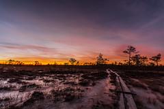 Paukaneva bog at dusk (ArtDvU) Tags: sunset evening finland winter paukaneva swamp bog southern ostrobothnia landscape dusk wideangle 1020 sigma canon eos 7d mkii sky ice