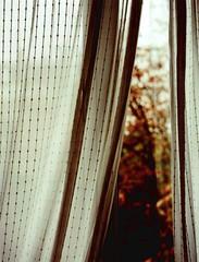 img-plb-660 (Roger Nuuk) Tags: paris analog curtains plaubelmakina67 6x7 xprocessing print croisé