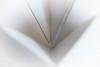 Just White Paper (Ptolemy the Cat) Tags: macromondays justwhitepaper paper white highkey folds nikond600 tamronf2890mmmacrolens brilliant