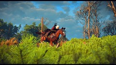 Riding through the fields (simonmino) Tags: witcher3 roach geralt horse grass velen