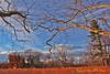 "MAGIC HOUR Landscape in Late Autumn/Fall at Duke Farms of Hillsborough NJ (takegoro) Tags: ""duke farms"" ""nature preserve"" nature hillsborough ""new jersey"" fall autumn landscape trees meadow grass native ""magic hour"" ""golden sunset orange"
