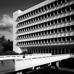 Social Sciences Tower (Chimay Bleue) Tags: brutalist brutalism architecture architect design modernism modernist pereira ac martin uci aardvarks social sciences tower