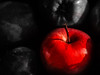 the red apple (fotonory) Tags: apple red blackandwhite oneundermillions shine apfel rot schwarzundweis