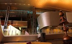 Doha Airport 11 (David OMalley) Tags: qatar doha airport hamad international