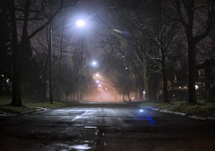 Out of the fog (jkotrub) Tags: 52in2017 fog street trees person shadow shade night light sky glow rain wet water dream dreamscape landscape outdoors outside streetphotography tree