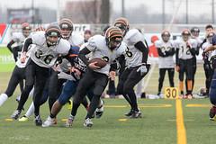 4D3A3040 (marcwalter1501) Tags: minotaure tigres strasbourg footballaméricain football sportdéquipe sport exterieur match nancy