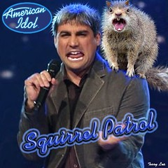 American Idol (Terry_Lea) Tags: squirrel squirrels photoshopfun tbas