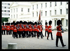 CHANGING OF THE QUEEN'S GUARD - London, England, UK (mambo1935) Tags: street city uk trip travel blue light red vacation england people urban white color london english soldier town uniform europe tour britain father guard son palace queen changing human buckinghampalace button british buckingham britisharmy lifeguards queensguard tunic grenadierguards irishguards changingguard footguards householddivision scotsguards coldstreamguards bluesandroyals welshguards cavalryregiments mambo1935