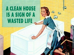 picture: a clean house is a sign of a wasted life