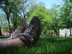 Resting at Harvard