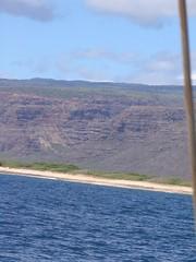 IMG_2401 (Dan F.) Tags: hawaii napalicoast bluedolphin kauai