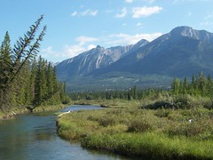 Bow Valley on a Summer Day (altamons) Tags: water trees sky rockymountains rocky rockies nature mountainview mountains mountain landscape kcountry kananaskiscountry kananaskis hiking green canmore canadianrockies canadian canada bowvalley bowriver blue albertaskys alberta altamons scout scouted explore explored interestingness interesting abigfave albertaskies