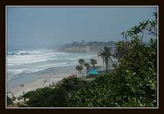 Del Mar Coastline and Beach ~