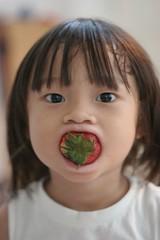 Strawberry Mouth 2 (sleepydays) Tags: boy red portrait face mouth strawberry singapore rey hilariouskids xgf02 x0201 x0202 x0203 x0204 x0205 x0206 x0207 x02shortlisted xgf02top108
