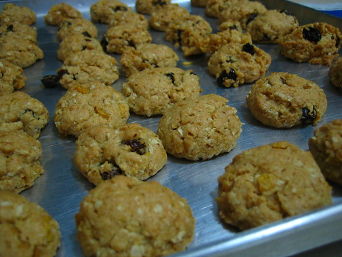 Raisin & Oat Cookies