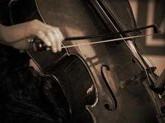 Cello (Dave Ward Photography) Tags: blackandwhite bw musician music usa musicians sepia us washington hands hand unitedstates unfound 2006 cello bow instrument bellingham wa strings trio gallerywalk whatcom davewardsmaragd dineonart