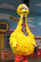 189574813 7d9877c065 m Big Bird Bully:  PBS Issues Scathing Rebuke Of Mitt Romneys Debate Promise to Cut PBS Funding