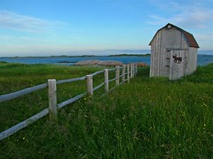 Tilt (Mark Veitch) Tags: ocean door blue camping sea sky horse green water grass tag3 taggedout barn fence newfoundland grey bay tag2 tag1 shed atlantic horseshoe 123ac