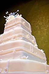 Cake (fensterbme) Tags: wedding friends 20d cake interestingness downtown weddingcake columbusohio l goodfriends frosting weddingphotos 2470mm fensterbme canon2470mm interestingness287 i500 canonllens canon2470mmf28l explore29jul06 alexandmartawedding