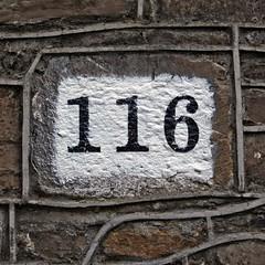 116 (Leo Reynolds) Tags: cemetery canon eos 350d iso100 number f71 116 ino 56mm 0ev 0006sec cemeteryglasnevin hpexif ino05 xsquarex xratio11x xleol30x