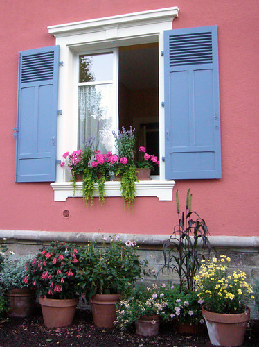 Flowers at the window por Kat....