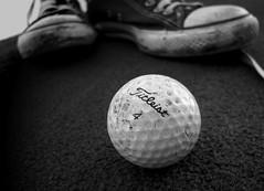 golf+converse
