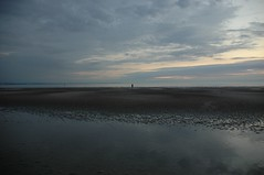 (gliesh) Tags: antonygormley anotherplace crosbybeach
