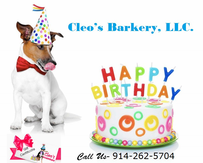 Doggie Birthday Cakes For Dogs Cleosbarkery Tags Dog Bakery New York Nyc