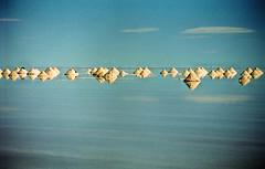 Salt mounds, Uyuni (RoryO'Bryen) Tags: voyage travel viaje light film latinamerica southamerica analog 35mm travels bolivia rory stunning salar uyuni bolivie américalatina salardeuyuni amériquedusud amériquelatine sudamérica américadelsur obryen roryobryen roarsthelion copyrightroryobryen