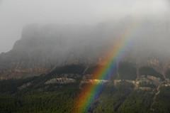 Mountain Rainbow (Bracus Triticum) Tags: autumn mountain canada fall rainbow bc columbia september british 9月 2015 カナダ 九月 longmonth ブリティッシュコロンビア州 長月 kugatsu nagatsuki くがつ 平成27年