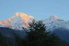 Morning Mountains (Mabacam) Tags: nepal foothills snow mountains rock sunrise trekking walking hiking peaks himalaya annapurna 2015 ghandruk annapurnasouth hiunchuli ghandrung annapurnahimal annapurna1 annapurnafoothills
