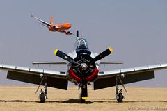 Mango B737 800 (3) (Indavar) Tags: plane airplane airshow chipmunk mustang albatros rand beech at6 radial an2 p51 l39 antonov dc4 dhc1 beech18 t28trojan b378